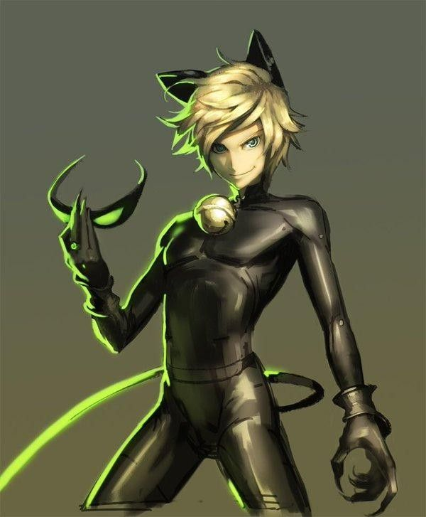 Sexy chat noir
