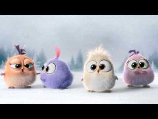Angry birds no l il ne se passe rien et ce n 39 est pas convaincant on esp re que le film aura de - Angry birds noel ...
