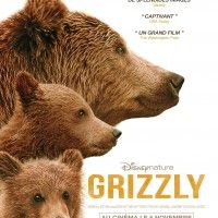 Affiche officielle du nouveau film #Disneynature: #Grizzly