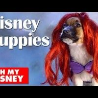 Adorable #Disney Puppies in Slow Motion | Oh My #Disney