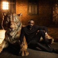 #LeLivreDeLaJungle #IdrisElba fait la voix de Shere Khan