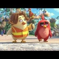 "#AngryBirds - Extrait ""Crossing Guard"" - VF"