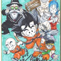 Dragon Ball dessin sur shikishi miyagido_karate