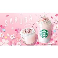 Sakura Milk Pudding Frappuccino et Sakura Milk Latte au Starbucks Japon