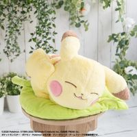 peluche 2020 Pokemon Collection Pikachu Forest