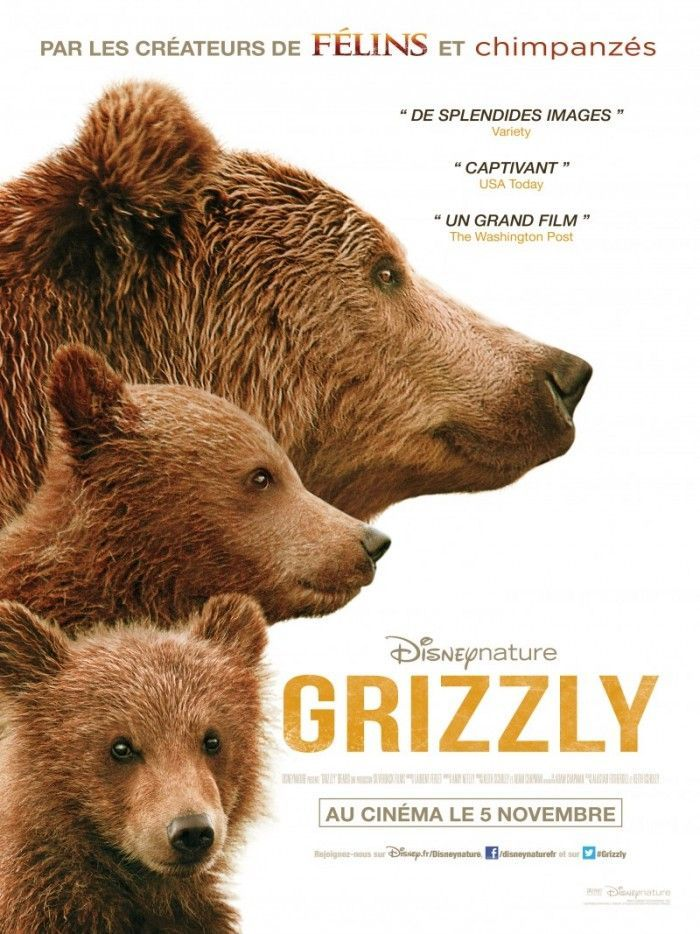 Critique de GRIZZLY: Animal si immense mais si fragile!